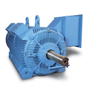 Features of medium voltage motor